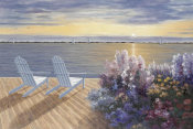 Diane Romanello - Deck View